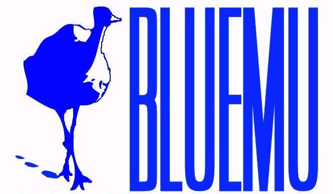bluemu logo i nazwa
